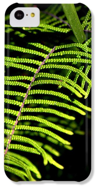 IPhone 5c Case featuring the photograph Pauched Coral Fern by Miroslava Jurcik