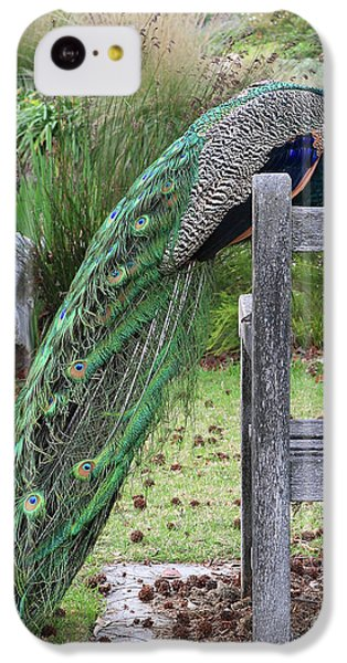 Peacock iPhone 5c Case - Peacock by Nicholas Burningham