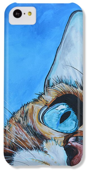 Cat iPhone 5c Case - Peek A Boo by Patti Schermerhorn