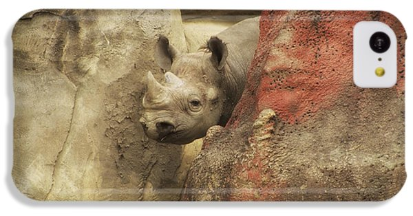 Peek A Boo Rhino IPhone 5c Case by Thomas Woolworth