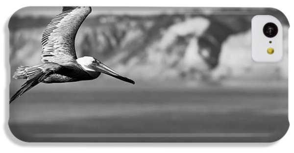 Pelican In Black And White IPhone 5c Case by Sebastian Musial