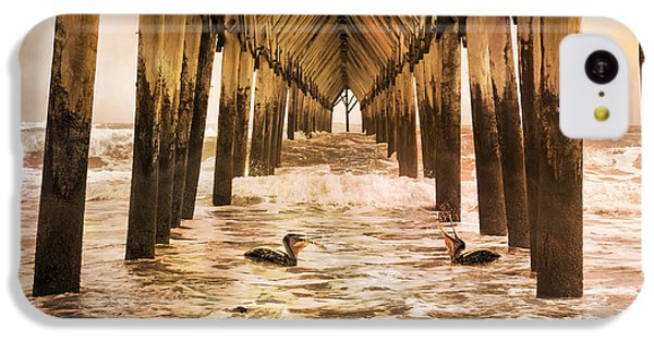 Pelican Paradise IPhone 5c Case by Betsy Knapp