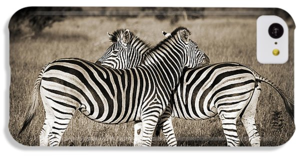 Perfect Zebras IPhone 5c Case by Delphimages Photo Creations