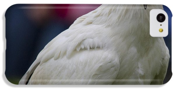 Pharaos Chicken 2 IPhone 5c Case by Heiko Koehrer-Wagner