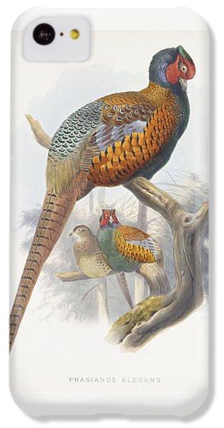 Phasianus Elegans Elegant Pheasant IPhone 5c Case by Daniel Girard Elliot