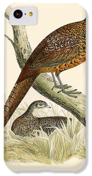 Pheasant IPhone 5c Case