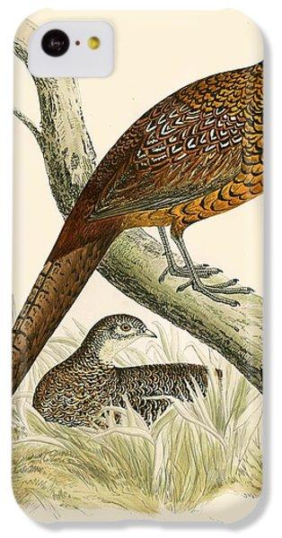 Pheasant IPhone 5c Case by Beverley R Morris