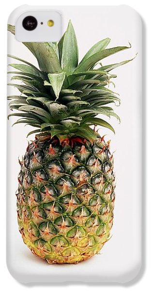 Pineapple IPhone 5c Case by Ron Nickel