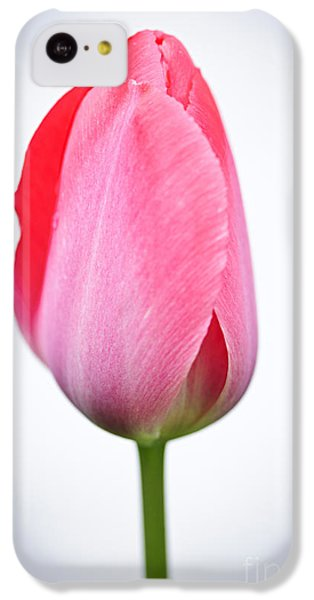 Tulip iPhone 5c Case - Pink Tulip by Elena Elisseeva
