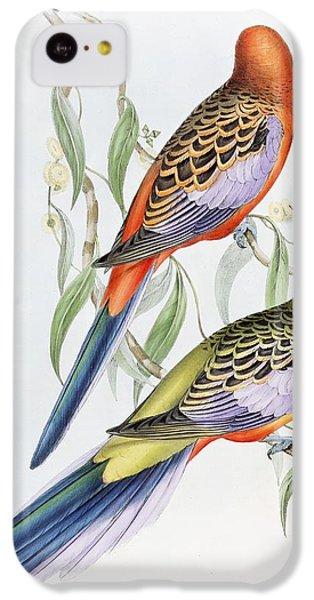 Parakeet iPhone 5c Case - Platycercus Adelaidae From The Birds Of Australia by John Gould