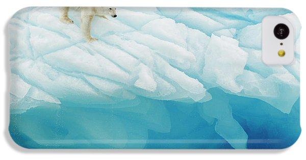 Polar Bear iPhone 5c Case - Polar Bear by Joan Gil Raga