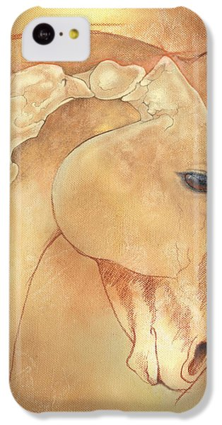 Poll Meet Atlas Axis IPhone 5c Case by Catherine Twomey