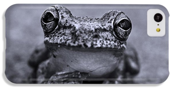 Pondering Frog Bw IPhone 5c Case by Laura Fasulo