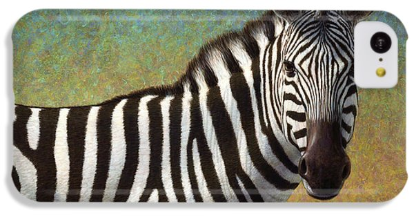 Portrait Of A Zebra IPhone 5c Case