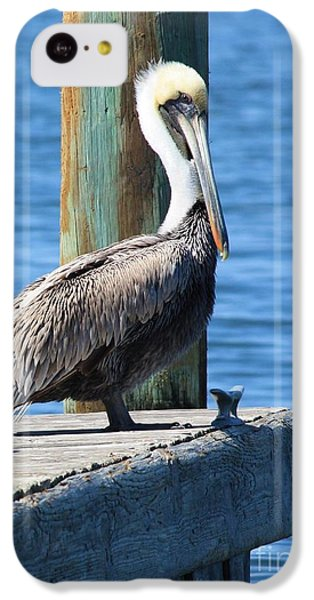 Posing Pelican IPhone 5c Case