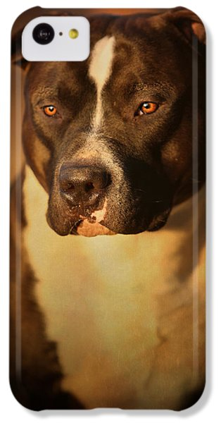 Bull iPhone 5c Case - Proud Pit Bull by Larry Marshall