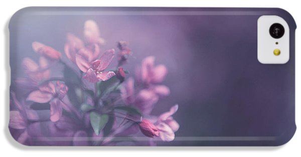 Flowers iPhone 5c Case - Purple by Carrie Ann Grippo-Pike