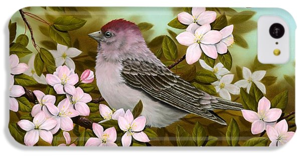 Purple Finch IPhone 5c Case by Rick Bainbridge