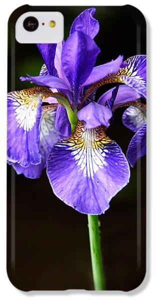 Purple Iris IPhone 5c Case