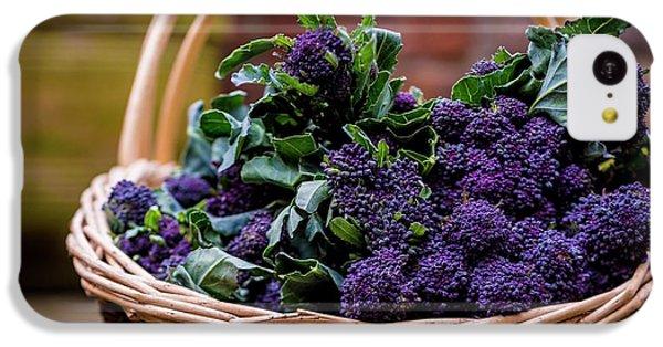 Purple Sprouting Broccoli IPhone 5c Case by Aberration Films Ltd