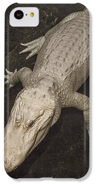 Rare White Alligator IPhone 5c Case