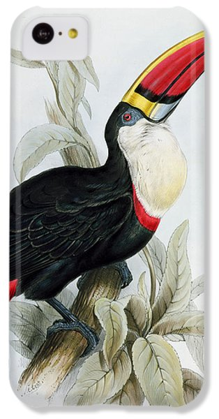 Red-billed Toucan IPhone 5c Case by Edward Lear