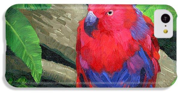 Parakeet iPhone 5c Case - Red Bird by Alice Leggett