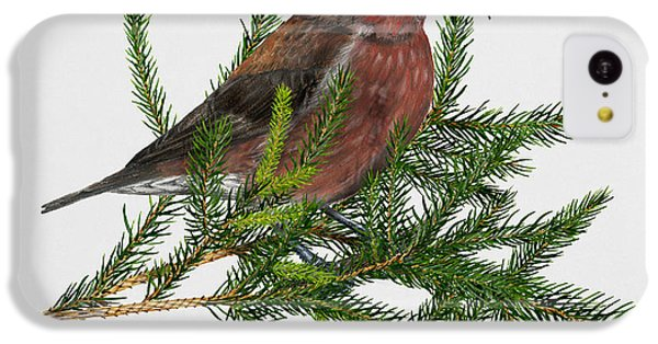 Red Crossbill -common Crossbill Loxia Curvirostra -bec-crois Des Sapins -piquituerto -krossnefur  IPhone 5c Case