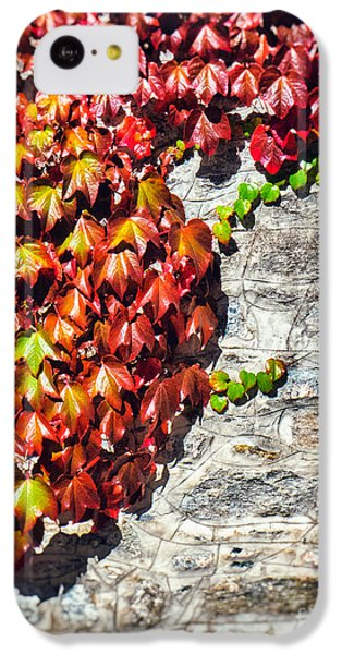 IPhone 5c Case featuring the photograph Red Ivy On Wall by Silvia Ganora