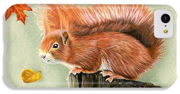 Red Squirrel In Autumn IPhone 5c Case by Sarah Batalka