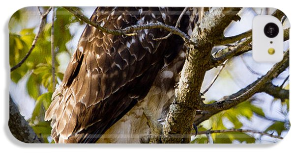 IPhone 5c Case featuring the photograph Red Tailed-hawk by Ricky L Jones