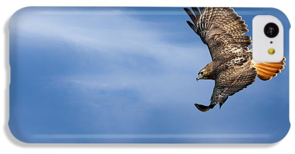 Red Tailed Hawk Soaring IPhone 5c Case by Bill Wakeley