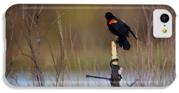 Red Winged Blackbird 2 IPhone 5c Case by Ernie Echols