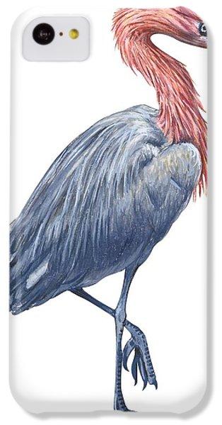 Reddish Egret IPhone 5c Case by Anonymous