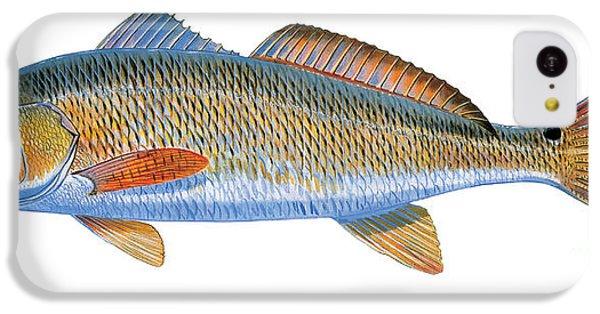 Drum iPhone 5c Case - Redfish by Carey Chen