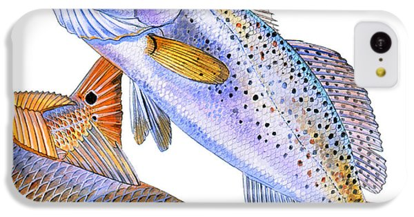 Drum iPhone 5c Case - Redfish Trout by Carey Chen
