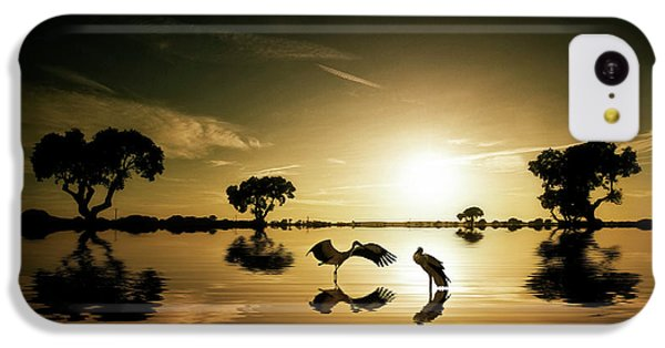Reflections In The Lake IPhone 5c Case