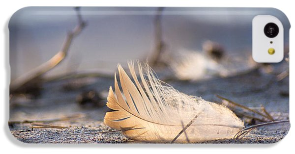 Remnants Of Icarus IPhone 5c Case