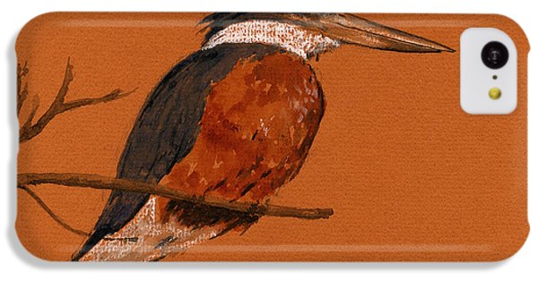 Ringed Kingfisher Bird IPhone 5c Case by Juan  Bosco