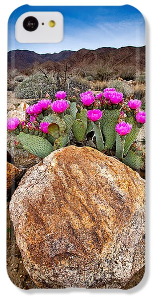 Desert iPhone 5c Case - Rock And Beavertail by Peter Tellone