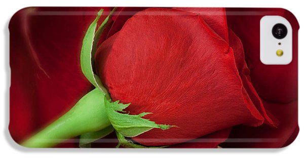 Rose II IPhone 5c Case by Andreas Freund