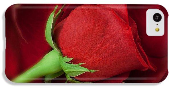 Rose II IPhone 5c Case