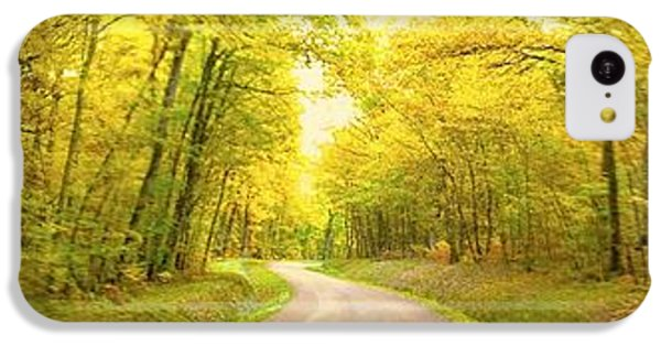 Route Dans La Foret Jaune IPhone 5c Case