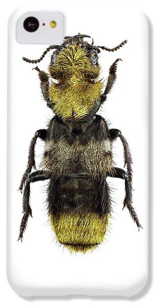 Emu iPhone 5c Case - Rove Beetle by F. Martinez Clavel
