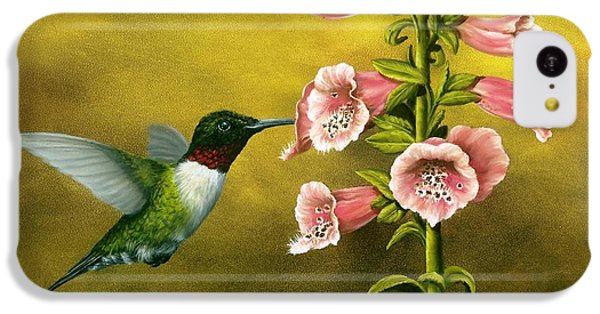 Ruby Throated Hummingbird And Foxglove IPhone 5c Case