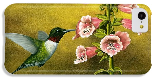 Ruby Throated Hummingbird And Foxglove IPhone 5c Case by Rick Bainbridge