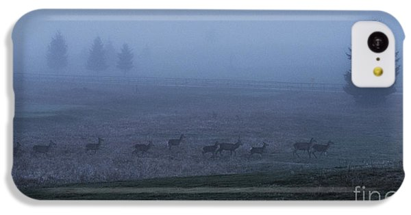 Running In The Mist IPhone 5c Case