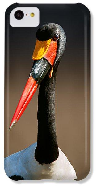 Saddle-billed Stork Portrait IPhone 5c Case