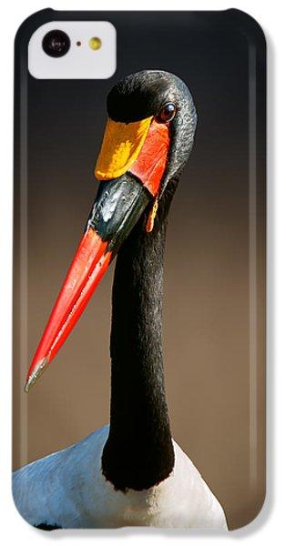 Saddle-billed Stork Portrait IPhone 5c Case by Johan Swanepoel