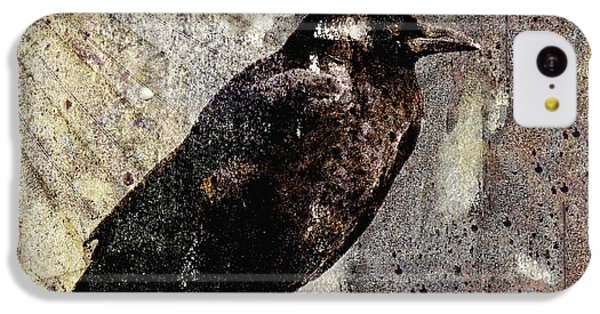 Same Crow Different Day IPhone 5c Case by Carol Leigh